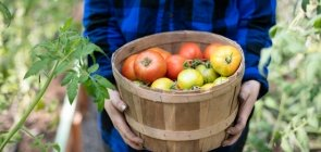 10 Reasons Why Organic Is Better for You