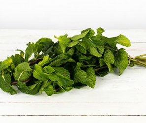 Organically Grown Herb, Mint