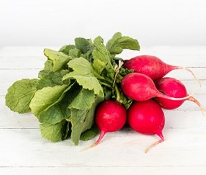 Organically Grown Radish, Red