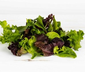 Organically Grown Lettuce, Spicy Spring Mix