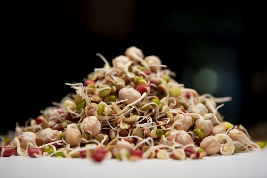 Reasons to Eat Sprouts + Recipes from a Sprout Farmer