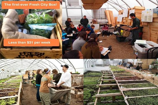 Annie Visits Fresh City to Get a Lesson in Urban Agriculture