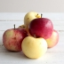 Organic Apples, Farmer's Choice (Macintosh)