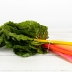 Organically Grown Chard, Rainbow