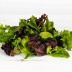 Organically Grown Lettuce, Spring Salad Mix