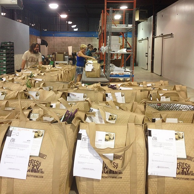 Packing Bags at the New Warehouse
